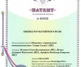 Патент антимагнитных пломб